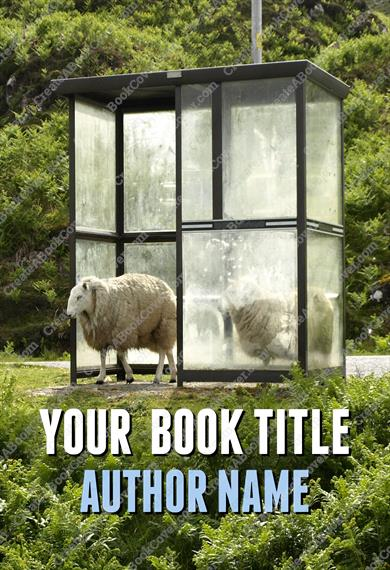Bus shelter with sheep